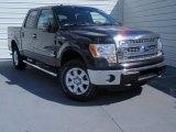 2014 Tuxedo Black Ford F150 XLT SuperCrew 4x4 #93245985