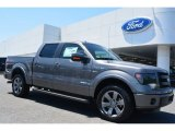 2014 Sterling Grey Ford F150 FX2 SuperCrew #93289043