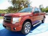 2014 Sunset Ford F150 STX SuperCab #93337391