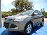 2014 Sterling Gray Ford Escape SE 1.6L EcoBoost #93337381