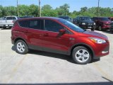 2014 Sunset Ford Escape SE 1.6L EcoBoost #93401605