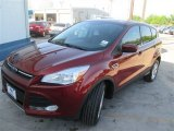 2014 Sunset Ford Escape SE 1.6L EcoBoost #93401604