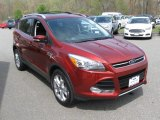 2014 Sunset Ford Escape Titanium 2.0L EcoBoost 4WD #93401650