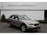 2014 Cashmere Silver Metallic BMW X1 xDrive28i #93409398