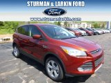 2014 Sunset Ford Escape SE 2.0L EcoBoost 4WD #93440342