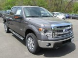 2014 Sterling Grey Ford F150 XLT SuperCrew 4x4 #93440724