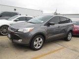 2014 Sterling Gray Ford Escape SE 1.6L EcoBoost #93440233