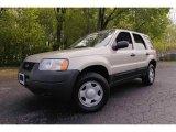 2003 Ford Escape Gold Ash Metallic