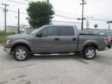 2014 Sterling Grey Ford F150 XLT SuperCrew #93482612
