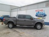 2014 Sterling Grey Ford F150 XLT SuperCrew 4x4 #93482608