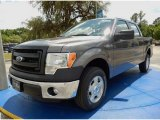 2014 Sterling Grey Ford F150 XL SuperCrew #93482665