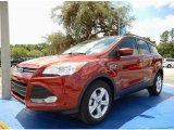 2014 Sunset Ford Escape SE 1.6L EcoBoost #93482661