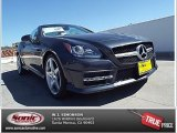 2014 Steel Grey Metallic Mercedes-Benz SLK 250 Roadster #93524024