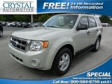 2009 Light Sage Metallic Ford Escape XLT #93524334