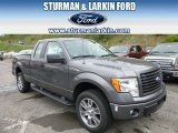 2014 Sterling Grey Ford F150 STX SuperCab 4x4 #93565821