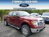 2014 Sunset Ford F150 XLT SuperCrew 4x4 #93565820