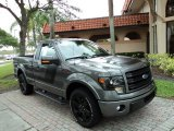 2014 Sterling Grey Ford F150 FX2 Tremor Regular Cab #93565785