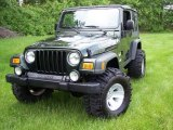 Jeep Wrangler 2004 Data, Info and Specs
