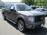 2014 Sterling Grey Ford F150 STX SuperCrew 4x4 #93667274