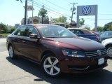 2014 Opera Red Metallic Volkswagen Passat 2.5L SE #93667266