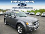 2011 Sterling Grey Metallic Ford Escape Limited V6 4WD #93666931