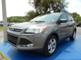 2014 Sterling Gray Ford Escape SE 2.0L EcoBoost #93705026
