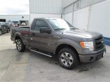 2014 Sterling Grey Ford F150 STX Regular Cab #93704981