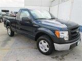 2014 Blue Jeans Ford F150 XL Regular Cab #93704978