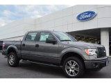 2014 Sterling Grey Ford F150 STX SuperCrew 4x4 #93752414