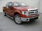 2014 Sunset Ford F150 XLT SuperCrew #93752563