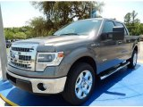 2014 Sterling Grey Ford F150 XLT SuperCrew #93752377