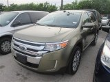2013 Ginger Ale Metallic Ford Edge Limited #93792890