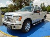 2014 Ingot Silver Ford F150 XLT SuperCab #93869794