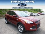 2014 Sunset Ford Escape SE 1.6L EcoBoost 4WD #93869819