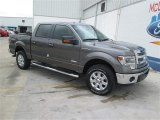 2014 Sterling Grey Ford F150 XLT SuperCrew 4x4 #93896323