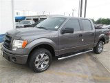 2014 Sterling Grey Ford F150 STX SuperCrew #93896322