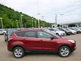 2014 Sunset Ford Escape SE 1.6L EcoBoost 4WD #93931967