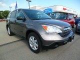 2009 Urban Titanium Metallic Honda CR-V EX 4WD #93932444