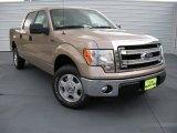 2014 Pale Adobe Ford F150 XLT SuperCrew #93932148