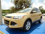 2014 Karat Gold Ford Escape Titanium 1.6L EcoBoost #93983532