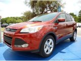 2014 Sunset Ford Escape SE 1.6L EcoBoost #93983531