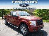 2014 Sunset Ford F150 STX SuperCab 4x4 #93983605