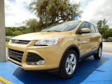 2014 Karat Gold Ford Escape SE 1.6L EcoBoost #94133516
