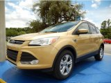 2014 Karat Gold Ford Escape SE 2.0L EcoBoost #94133514