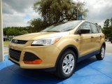2014 Karat Gold Ford Escape S #94133513