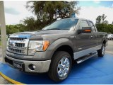 2014 Sterling Grey Ford F150 XLT SuperCab #94133510
