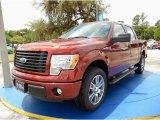 2014 Sunset Ford F150 STX SuperCrew #94133507