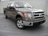2014 Sterling Grey Ford F150 XLT SuperCrew #94133697
