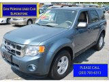 2010 Steel Blue Metallic Ford Escape XLT #94175542