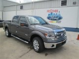 2014 Sterling Grey Ford F150 XLT SuperCrew #94175610